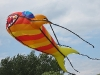 andrea-fish-kite