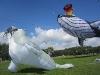 seal-kite