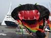 Rotterdam havendagen vliegershow 8