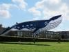 whale-kite-3