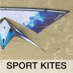theme kites Mascotte Kite Team8