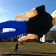 Johnny Bravo mega kite in Amsterdam