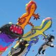 DESIGNKITESPROJECTEN vlieger evenementen