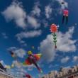 Vissenkom op het vliegerfestival Scheveningen