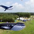 25ste Vliegerfestival Emmen 2013