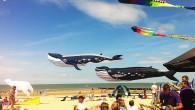 Cadzand Vliegerfestival 2014