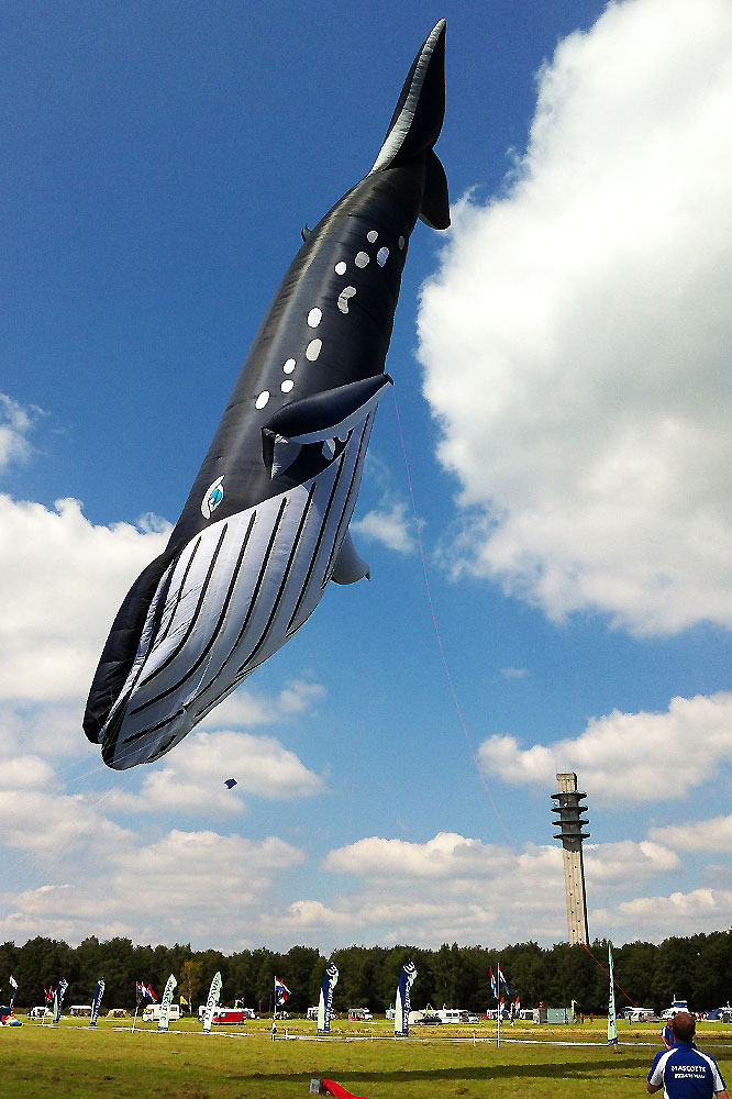 whale-kite-hot-balloon-1