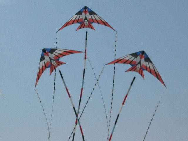 ray_bathel_kites1