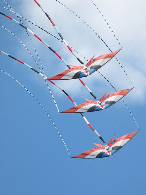 ray_bathel_kites3