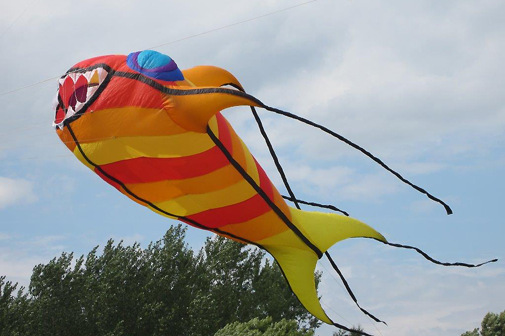 andrea-fish-kite