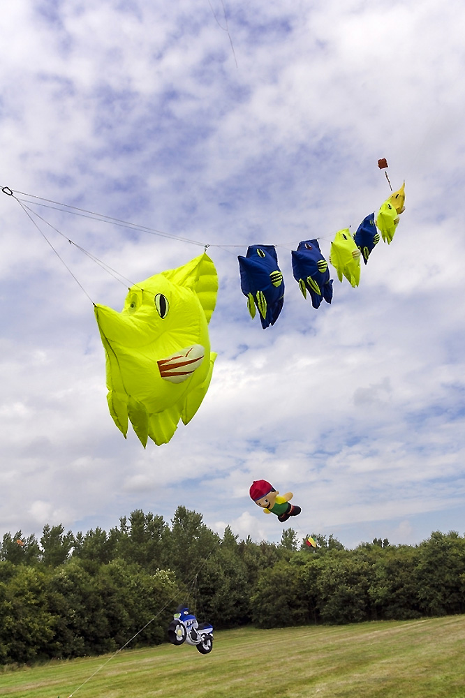 fish-kites
