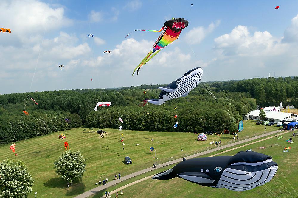 mascotte-kite-team