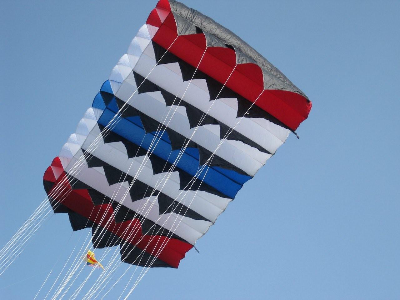 2010 Vroomshoop vliegerfestival