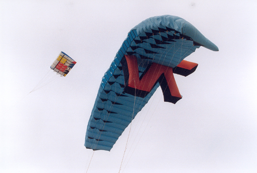 biggest_stunt_kite_1