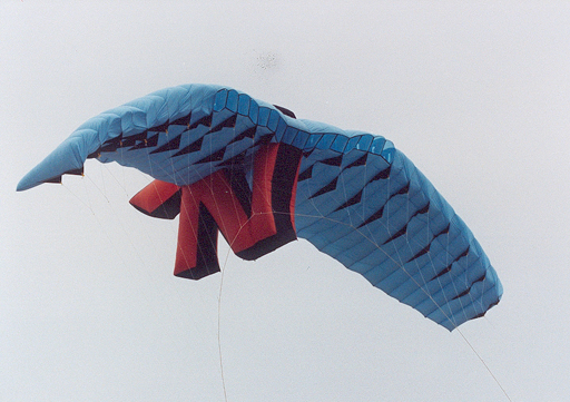 biggest_stunt_kite_4