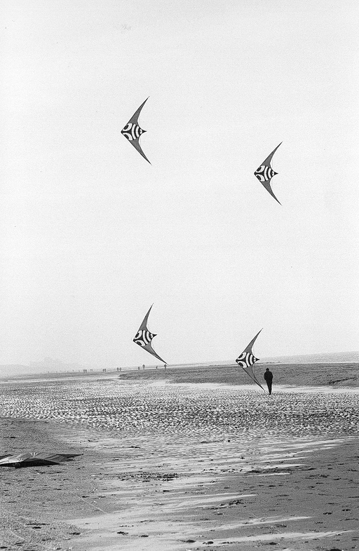 team_kite_flying_1