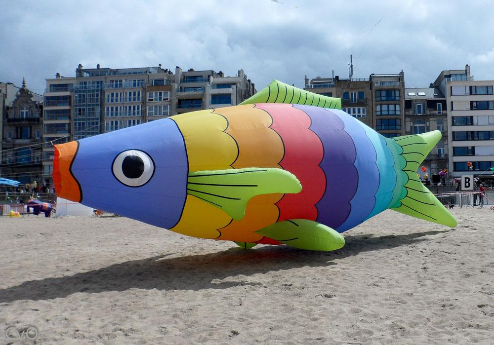 2012-05 Oostende (95)