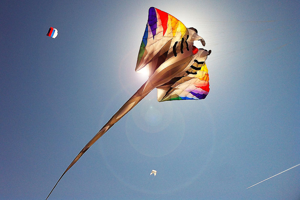 oostende-kite-festival-manta-kite
