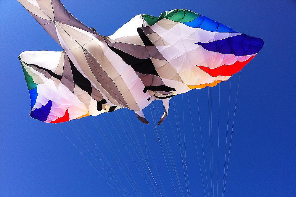 oostende-kite-festival-manta-kite2
