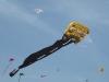 2009 Vliegerfestijn Oostende (52)