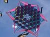 2009 Vliegerfestijn Oostende (79)