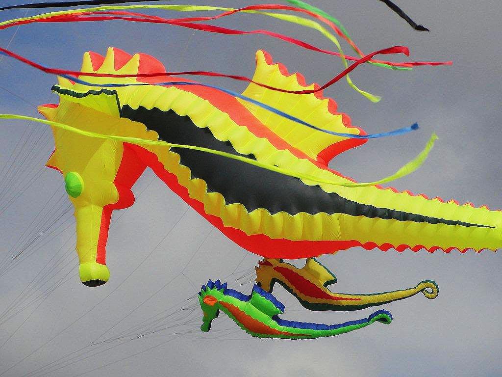 2010 Vliegerfestijn Scheveningen zaterdag (46)