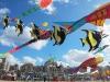scheveningen-kitefestival-2012-robert-van-weers-fishes