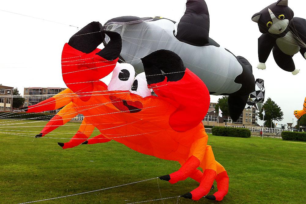 vlieger-festival-spijkenisse-2012-5
