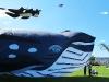 infleatable-whale-kite