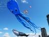vlieger-evenement-spijkenisse