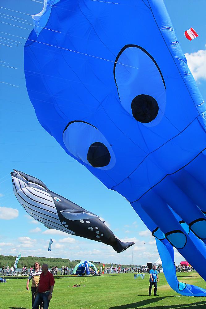 vlieger-festival-spijkenisse