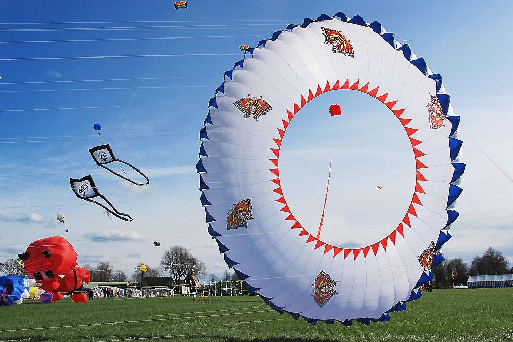 Rotor-vlinder