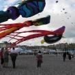 Dieppe Vliegerfestival 2010
